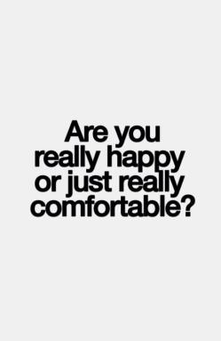 happy or comfortable
